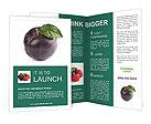 0000095616 Brochure Templates