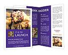 0000095643 Brochure Templates