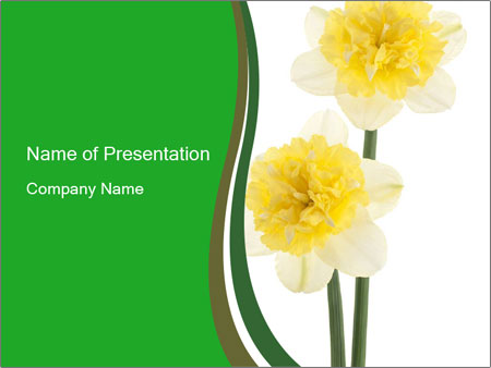 Yellow Flowers Powerpoint Template Backgrounds Google Slides Id