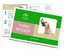 0000096025 Postcard Templates