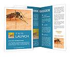 0000096061 Brochure Templates