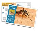 0000096061 Postcard Templates