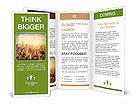 0000096074 Brochure Templates