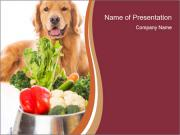 Retriever dog PowerPoint Templates
