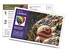 0000096282 Postcard Templates