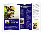 0000096343 Brochure Templates
