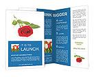 0000096460 Brochure Templates