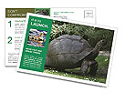 0000096501 Postcard Templates