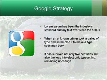 0000096501 PowerPoint Template - Slide 10
