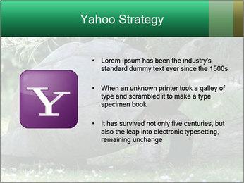 0000096501 PowerPoint Template - Slide 11
