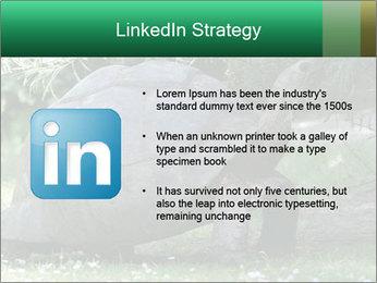 0000096501 PowerPoint Template - Slide 12