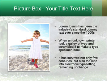0000096501 PowerPoint Template - Slide 13
