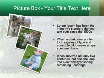 0000096501 PowerPoint Template - Slide 17