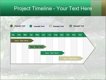 0000096501 PowerPoint Template - Slide 25