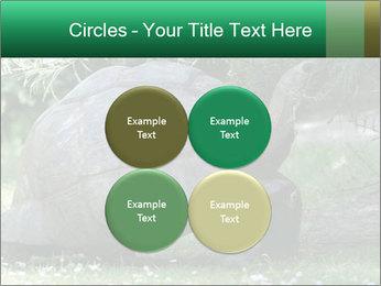 0000096501 PowerPoint Template - Slide 38