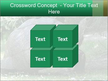 0000096501 PowerPoint Template - Slide 39