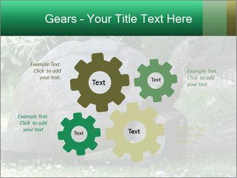 0000096501 PowerPoint Template - Slide 47