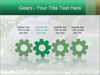 0000096501 PowerPoint Template - Slide 48