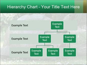 0000096501 PowerPoint Template - Slide 67