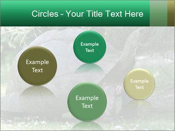 0000096501 PowerPoint Template - Slide 77