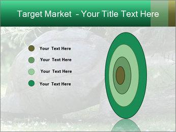 0000096501 PowerPoint Template - Slide 84