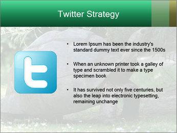 0000096501 PowerPoint Template - Slide 9