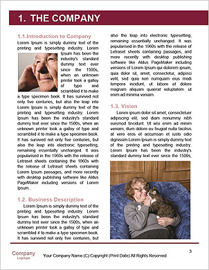 0000096504 Word Template - Page 3