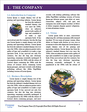 0000096505 Word Template - Page 3