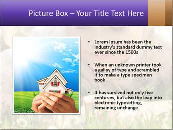 0000096508 PowerPoint Template - Slide 13