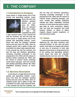 0000096509 Word Template - Page 3