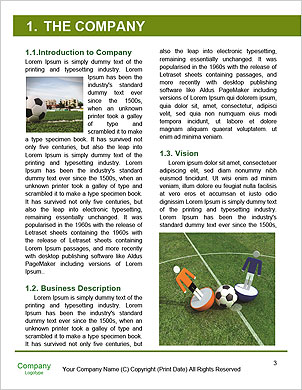 0000096510 Word Template - Page 3