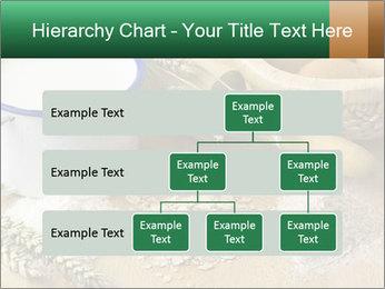 0000096511 PowerPoint Template - Slide 67
