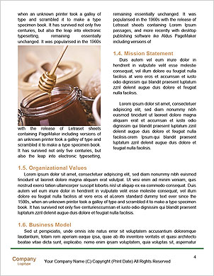 0000096511 Word Template - Page 4