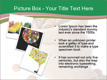 0000096516 PowerPoint Template - Slide 17