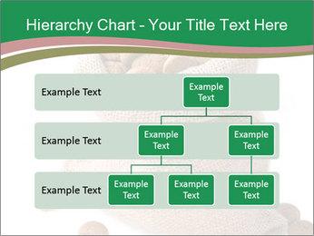 0000096516 PowerPoint Template - Slide 67