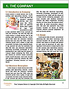0000096517 Word Template - Page 3