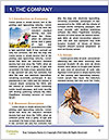 0000096521 Word Template - Page 3