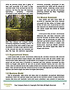 0000096528 Word Template - Page 4
