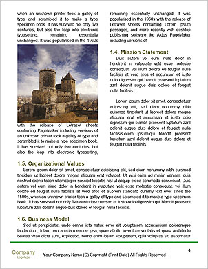 0000096529 Word Template - Page 4