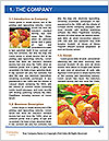0000096530 Word Template - Page 3