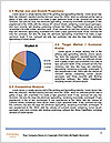 0000096530 Word Template - Page 7