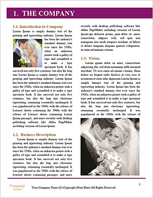 0000096531 Word Template - Page 3