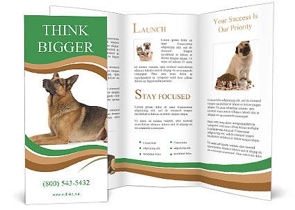0000096545 Brochure Template