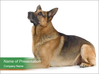 0000096545 PowerPoint Template - Slide 1