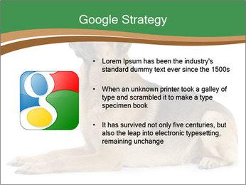 0000096545 PowerPoint Template - Slide 10