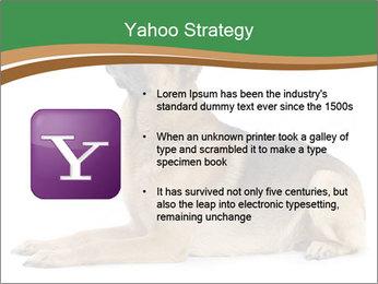 0000096545 PowerPoint Template - Slide 11