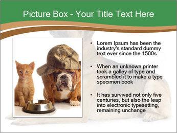 0000096545 PowerPoint Template - Slide 13