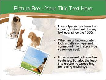 0000096545 PowerPoint Template - Slide 17
