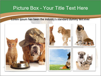 0000096545 PowerPoint Template - Slide 19