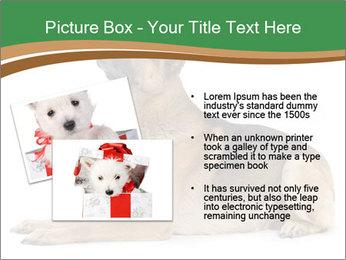 0000096545 PowerPoint Template - Slide 20